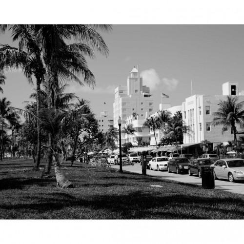 """exposition belka """"Florida"""""""
